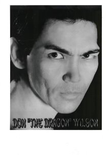 Don 'The Dragon' Wilson